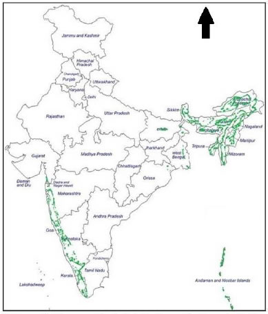 Geographical distribution of rattans in India.