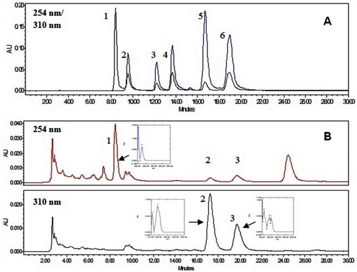 Chromatographic analysis: A, RP-HPLC chromatograms of authentic standards of different phenolic compounds. Peak identity: 1. 4-Hydroxybenzoic acid, 2.vanillic acid, 3.vanillin, 4. 4-hydroxybenzaldehyde, 5.4-coumaric acid, 6. trans-ferulic acid; B, RP-HPLC chromatograms of cell-wall bound fractions. Peak identity: 1. 4-hydroxybenzoic acid, 2. 4- coumaric acid, 3.ferulic acid. UV spectra are shown in inset. The unidentified peak is denoted by '*'.