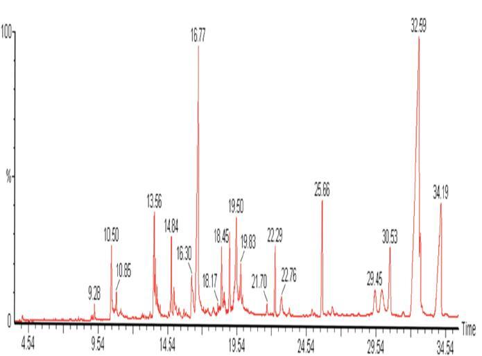 GC-MS chromatogram of methanolic extracts of Cuscuta reflexa (Muzaffarnagar Sample).