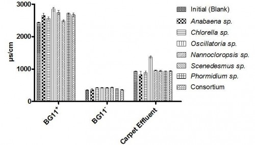 Conductivity of media and carpet effluent of blank (Initial) after growth of monoculture and consortia.