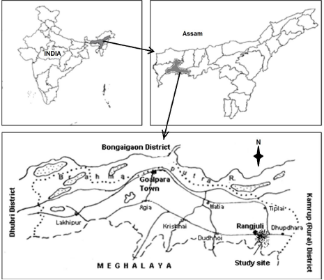 Location of the study area in Goalpara District, Western Assam, Northeast India.