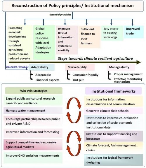 Schematic representation of policy interventions with institutional framework for climate change adaptation.