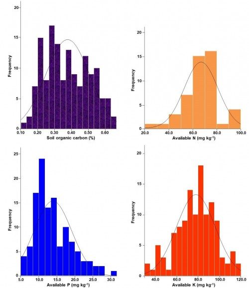 Frequency distribution of SOC, available N, P and K across high density mango orchard soils.