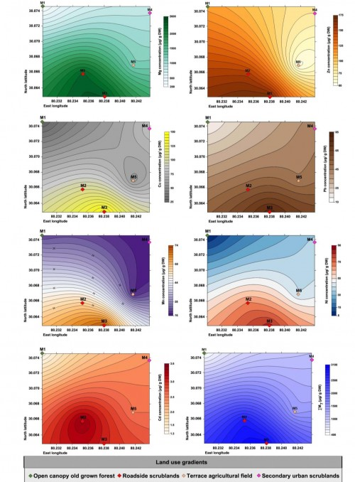 Concentration of heavy metals analyzed (Mg, Zn, Cu, Pb, Mn, Ni, Cd and total metal load (ƩM7) in <em>Stereocaulon foliolosum</em> Nyl. from different plots along four land use gradient.