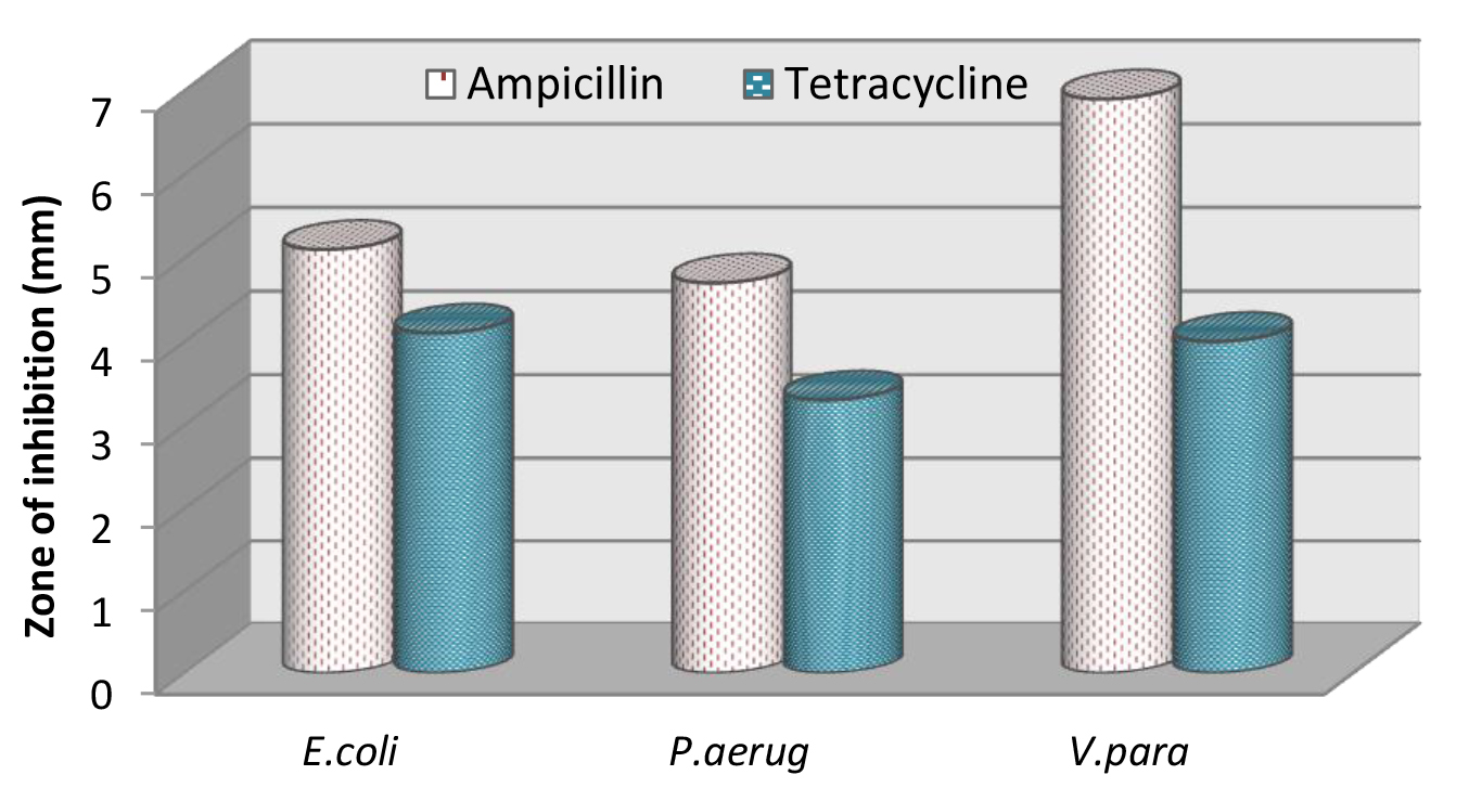 Antibacterial activity Ampicillin and Tetracycline against pathogenic microorganism.